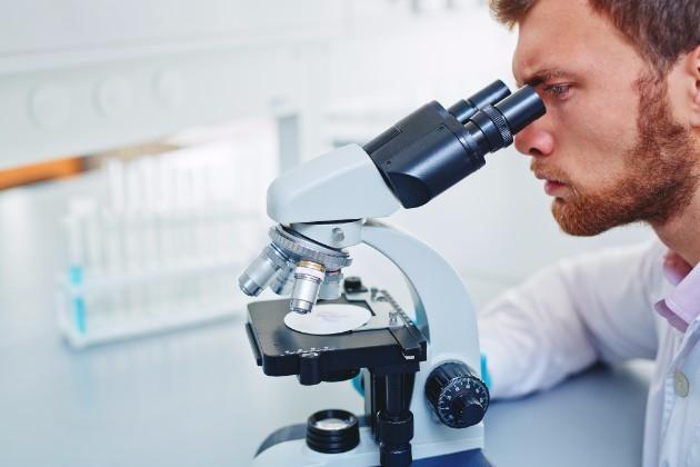 【詳しく解説】研究開発(医薬品)へ就職するのに必要なこととは?の画像