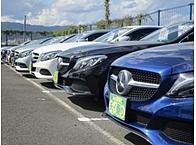 在庫200台の輸入車専門店も経営。 資本力にはかなり自信があります。